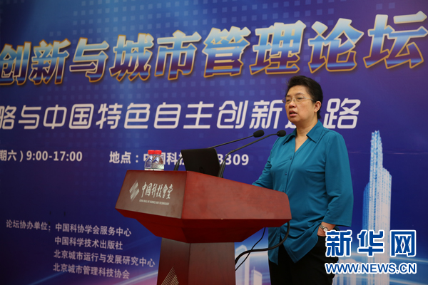 Lu Wei attends Technological Innovation and City Management Forum