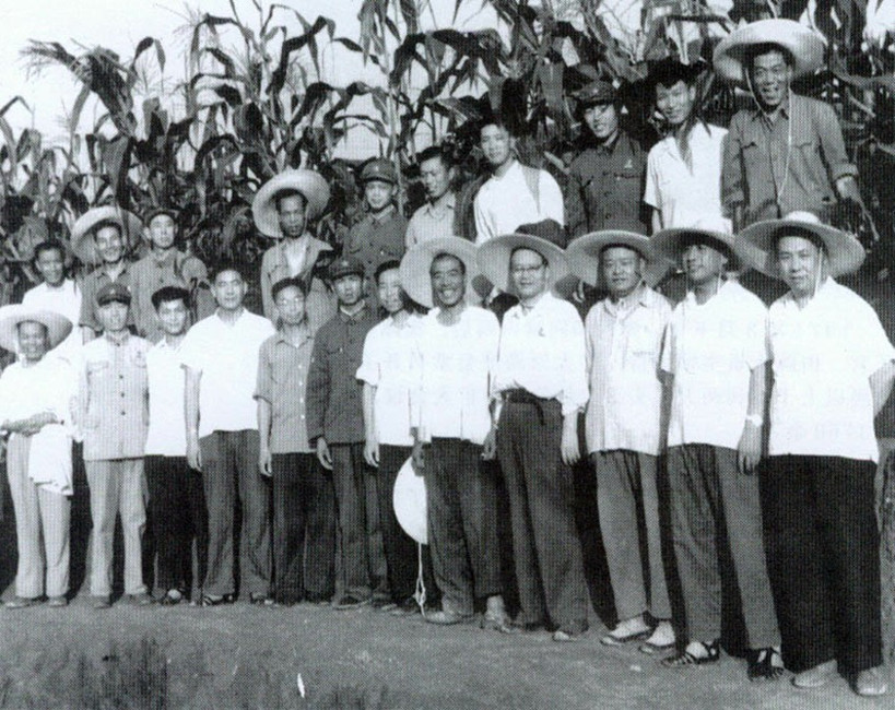 """The Chief of the Agriculture Sector"" During the Cultural Revolution -- Recollections of Ji Dengkui"