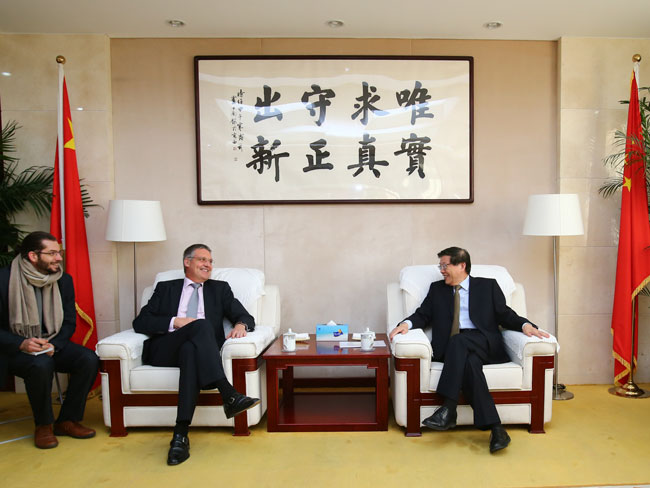 Li Wei meets with official from German Foreign Ministry