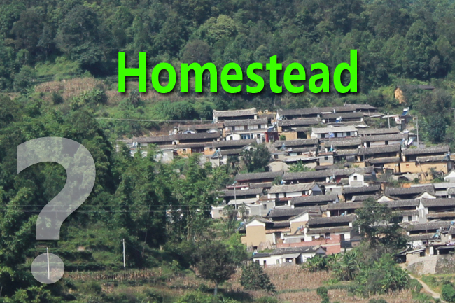 Policy Options on Deepening the Reform of Rural Homestead System