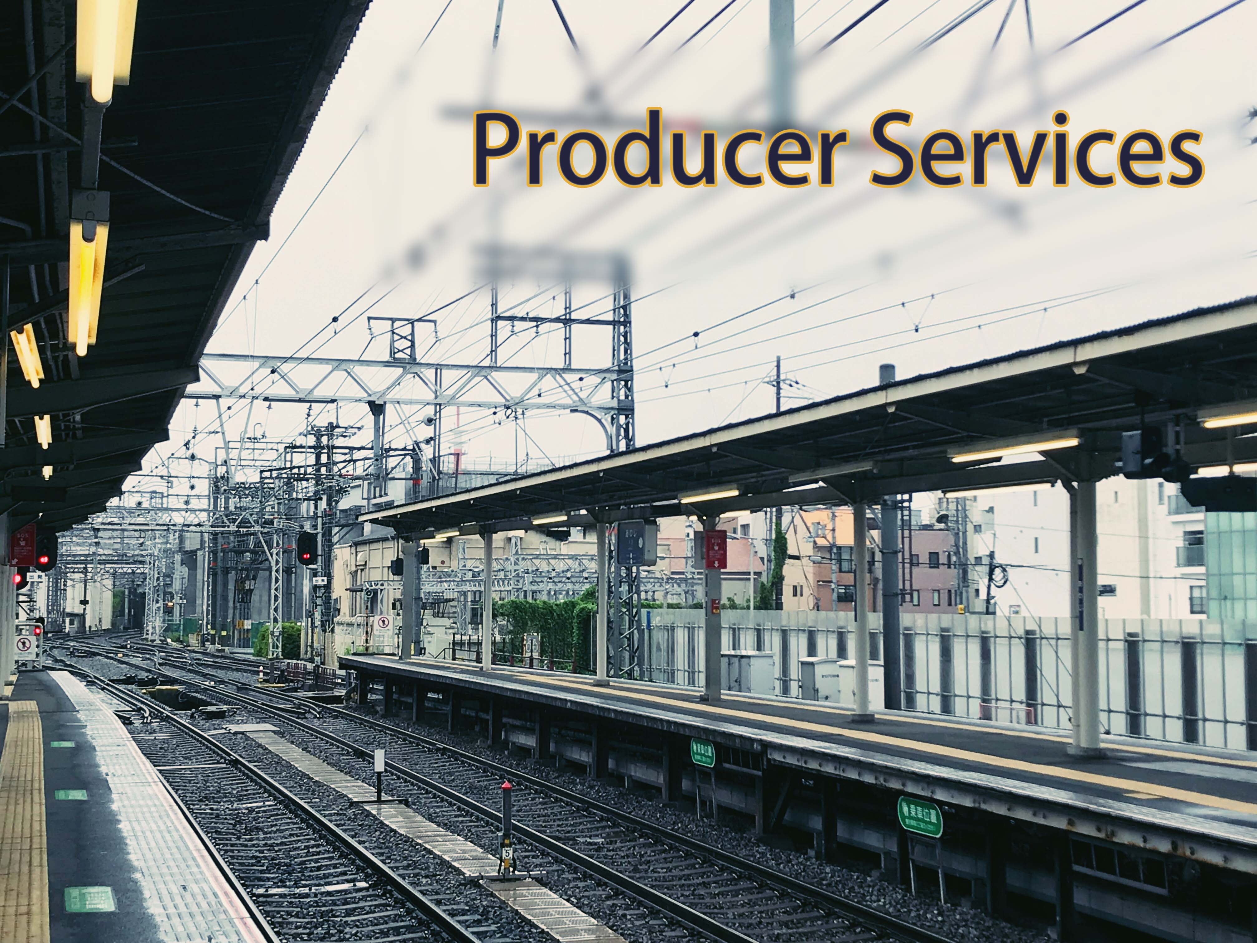 Development Trends of Producer Service Industries