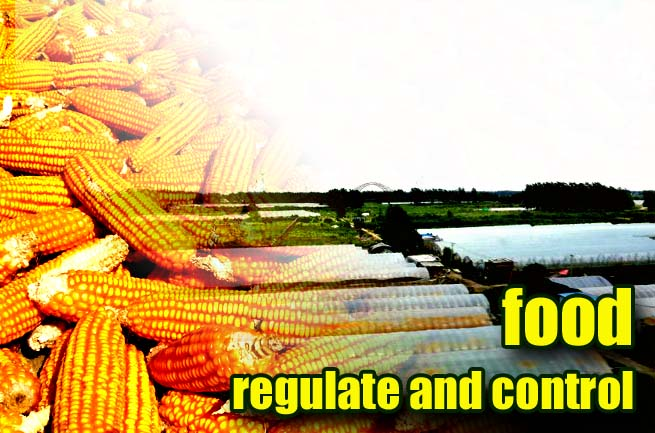 Further Improve the Food Control Policy System with the Idea of Treating Grain Output and Grain Production Capacity with Different Measures
